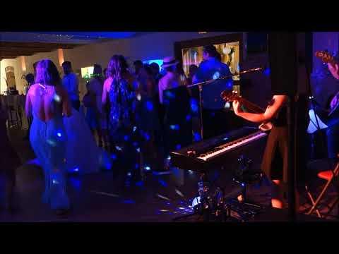 Hochzeit im Stadlerhof Wilhering - All the Small Things (Blink 182) - Coverage