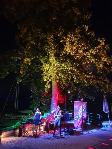 Sommernacht am Attersee
